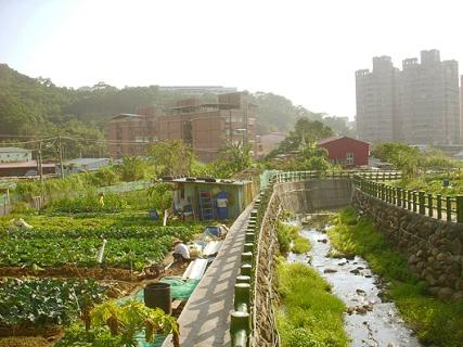 Farmland and the Plum Tree Creek. Photo credit: http://bambooculture.com/en/news/1743